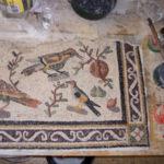 uccelli con greca eseguiti durante il corso di mosaico romano