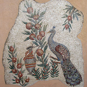 pavone copia romana mosaico classico